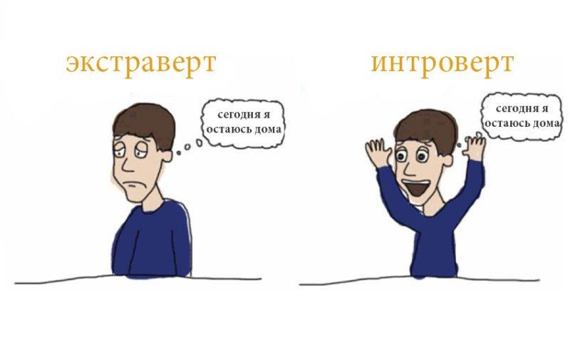 экстраверт и интроверт разница