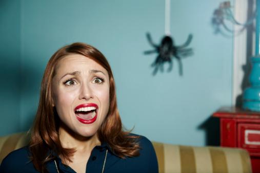 девушка боится паука фото