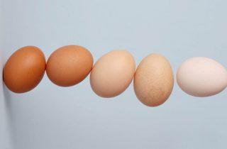 что нельзя на яичной диете